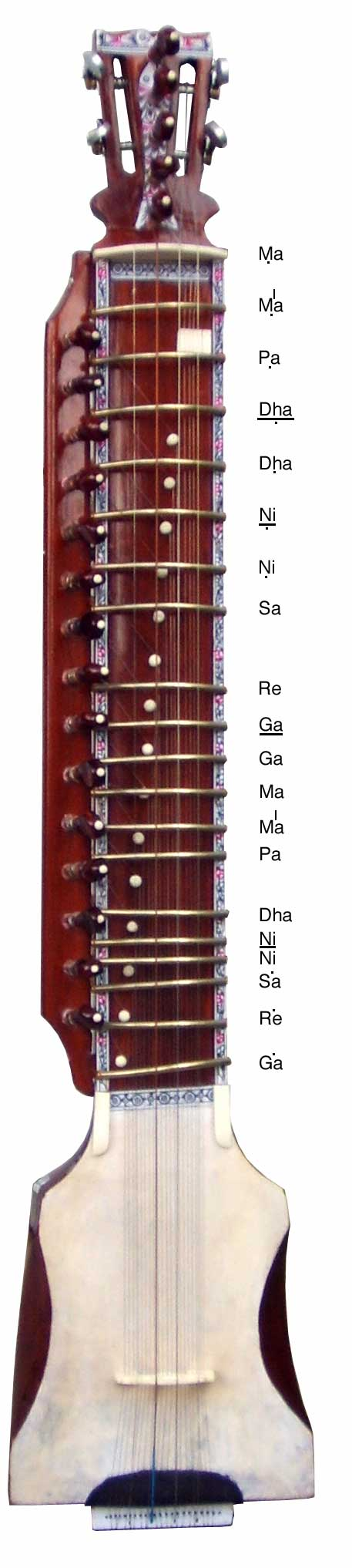 the frets of the Dilruba